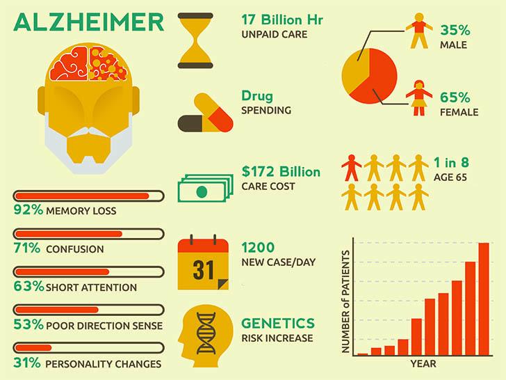 Infographie sur la maladie d'alzheimer