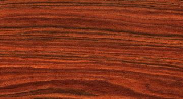 Morceau de Bois de Rose pour l'élaboration d'une huile essentielle.