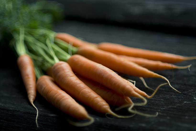 Lots de carottes.