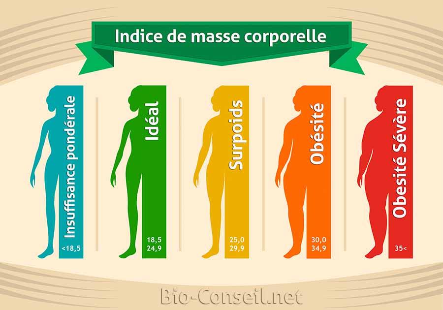 Les différents indices de masse corporelles expliquées en infographie.