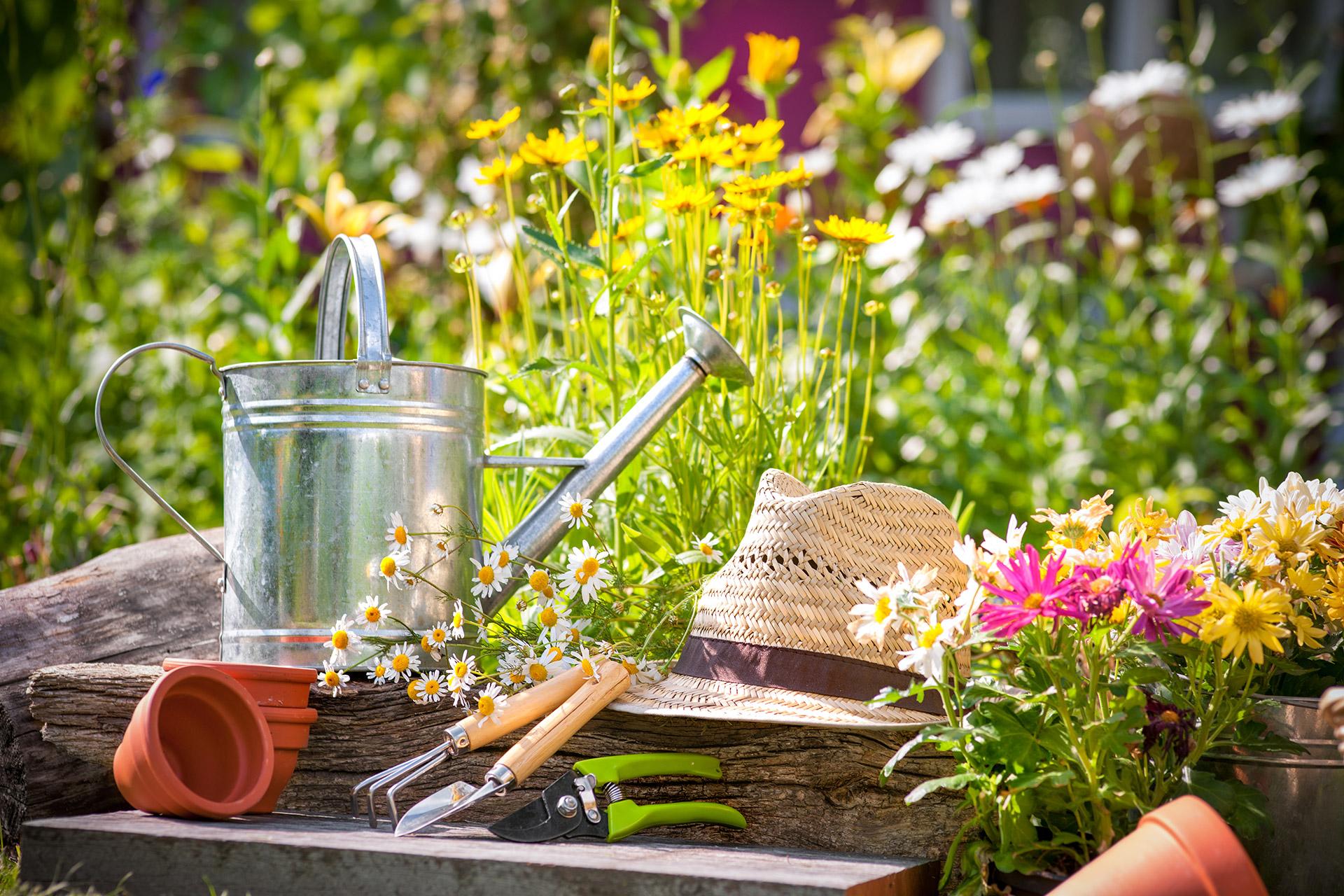 L'hortithérapie, un outil de réinsertion sociale.