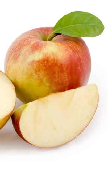 Pomme fruit entière et en quartier.