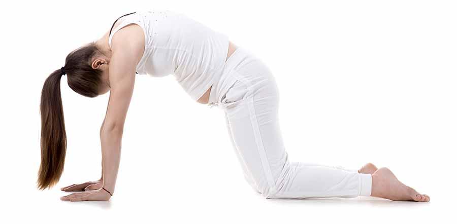 Posture du chat pour le yoga prenatal.