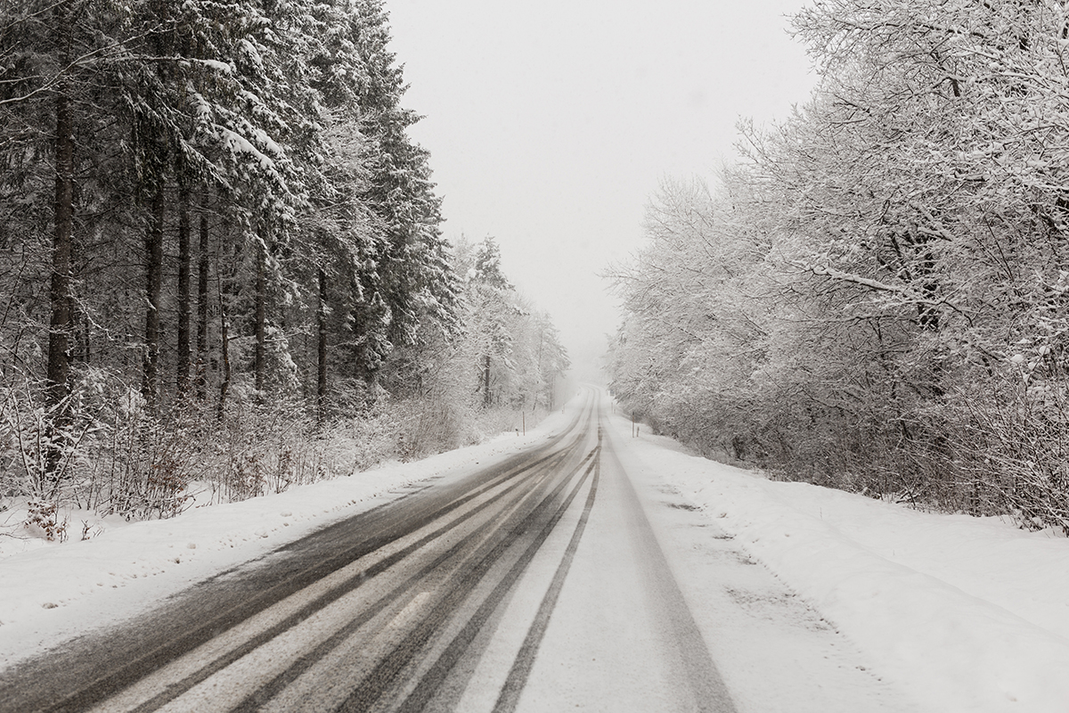 Paysage d'hivers avec des températures basses.